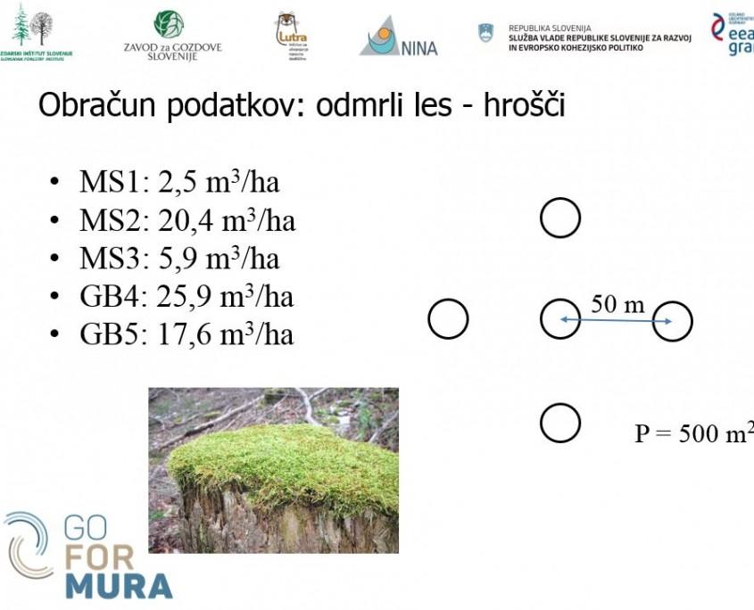odmrli les_podatki_hrošči 2016